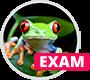 HTML5 Exam